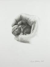 Hand mit Walnuß